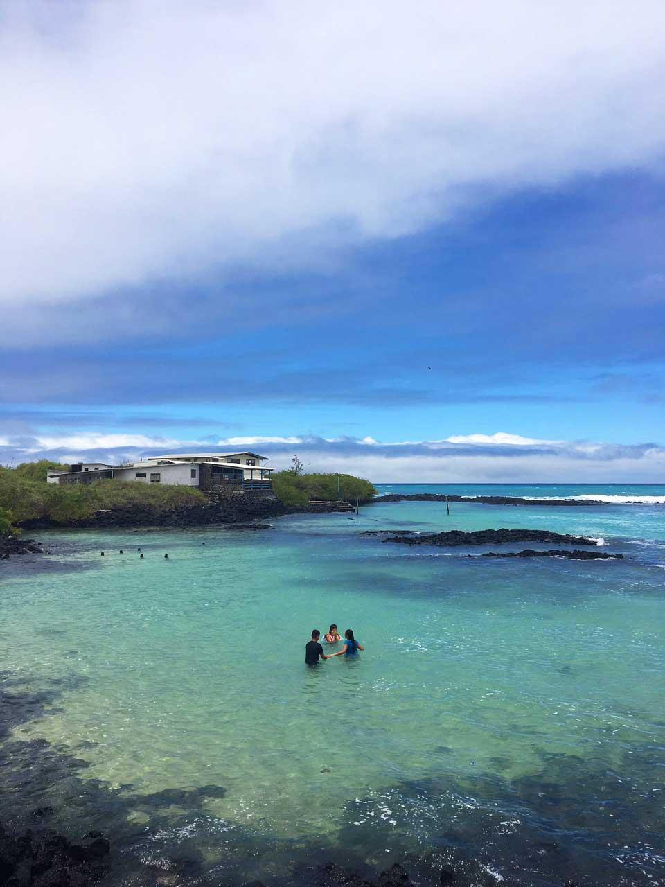 puerto ayora galápagos